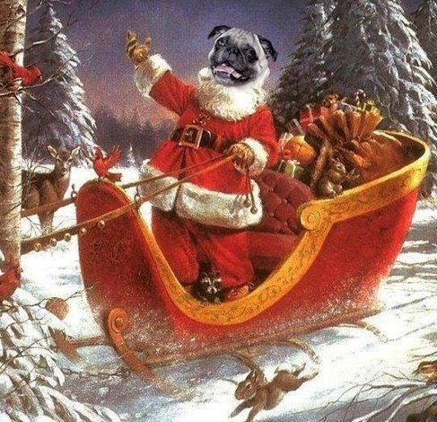 Teawechat Season Holiday This My Wheres Santa