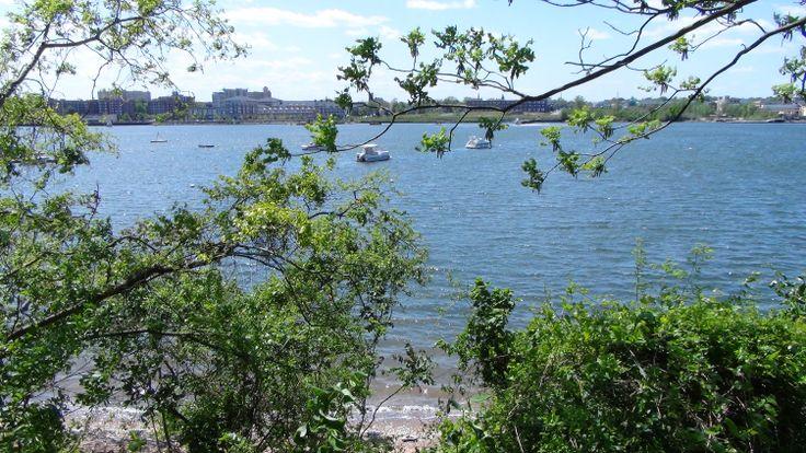 Perv Staten Peopl Seeking Island Fun