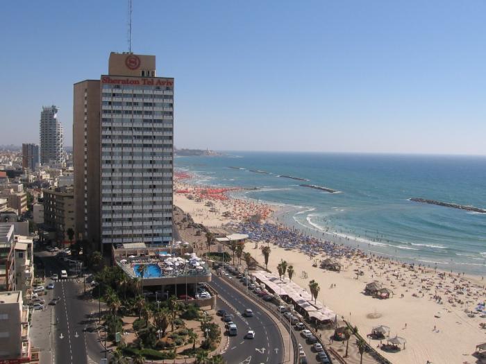 Reunited Aviv Tel Israel Love In Hotels