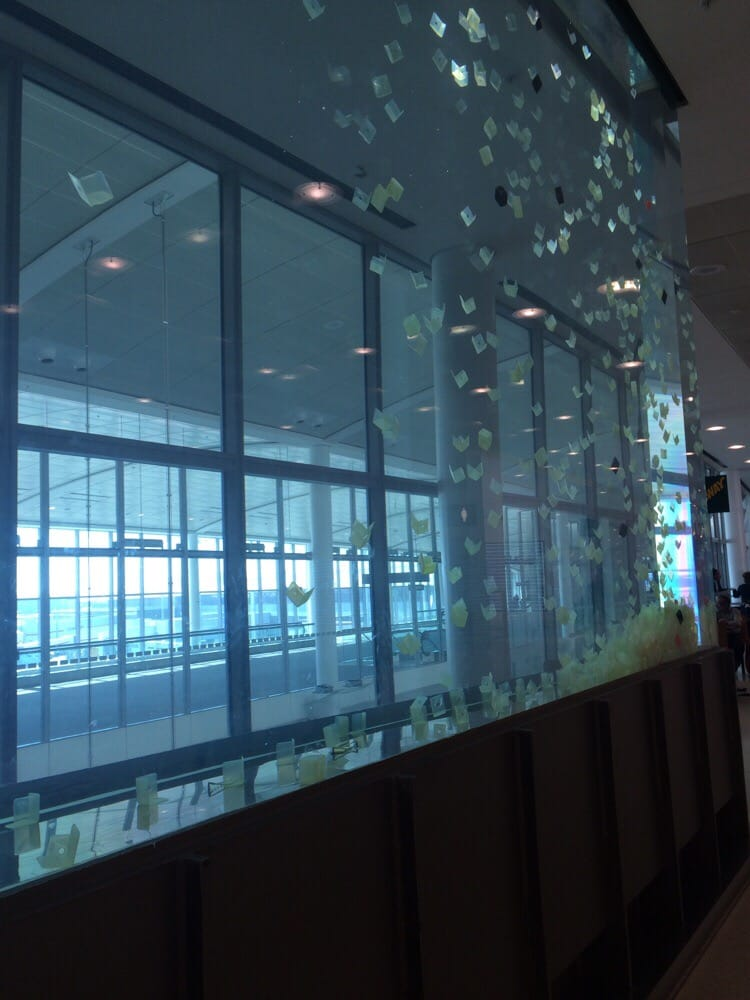 Area Mississauga Airport Toronto Motel Escort Yyz