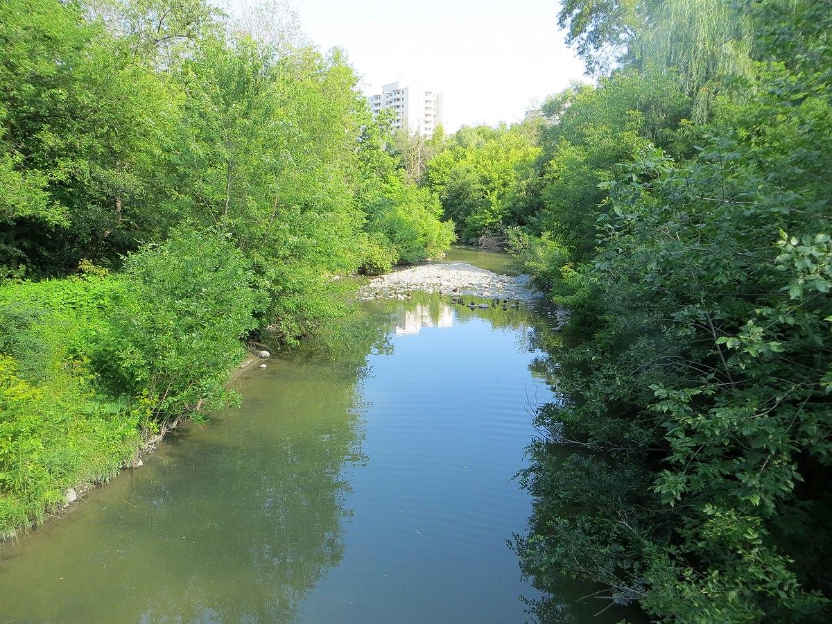 Cms Toronto Escort Mississauga Lakeshore 40 Cawthra
