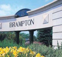 Seume Brampton Mississauga Burlington Milton Toronto Escort